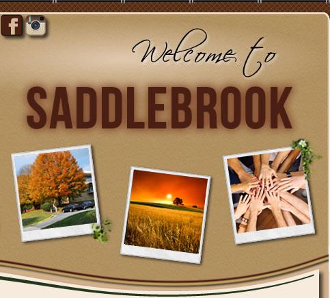Saddlebrook hoa for Saddelbrook